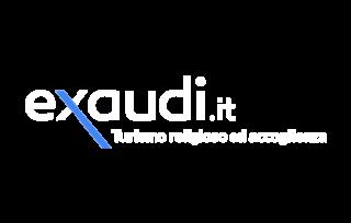 https://www.scuoleingita.it/wp-content/uploads/2020/03/logo-exaudi-320x204.png